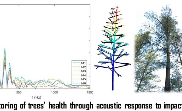 ATTRACT featured stories: Development of a percussion sensor for wood disease evaluation (PERSEFONE)