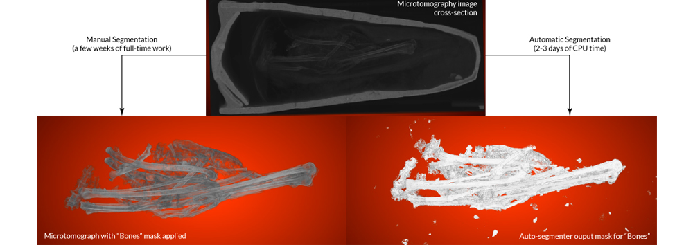ATTRACT featured stories: Automated segmentation of microtomography imaging (ASEMI)